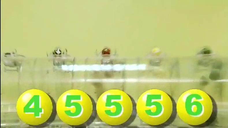 Проверить лотерейный билет золотая подкова по номеру билета - 262c
